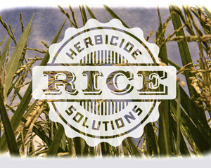 Herbicide Rice Solutions